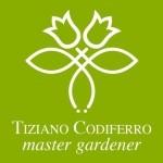 www.codiferro.it